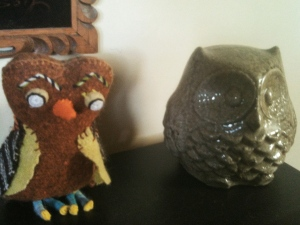 interior owls