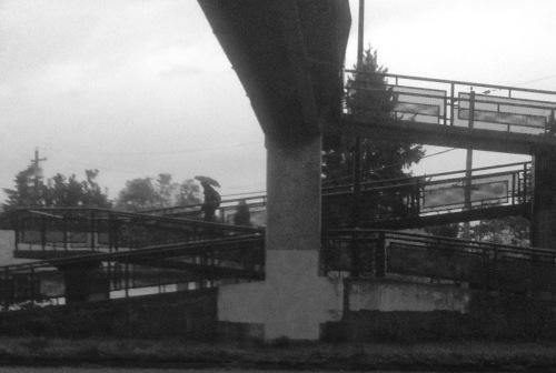 bridge 1 (2)