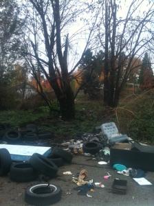 dump site 2