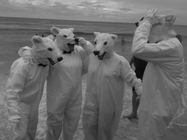 polar bears in FLA