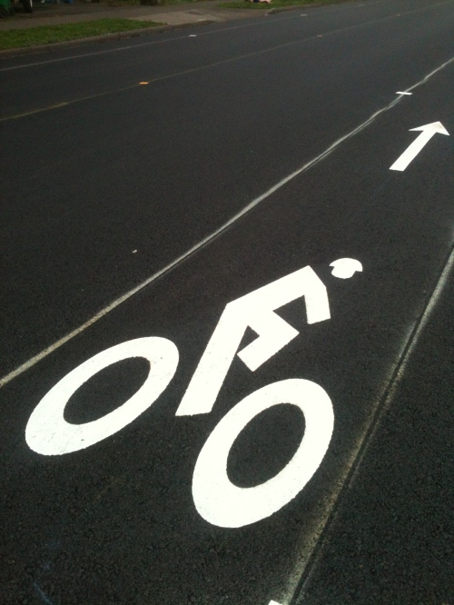 Bike lane marker plain