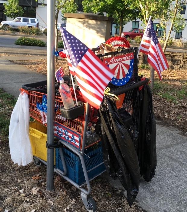 USA Cart