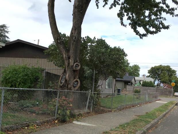 smiling-tree