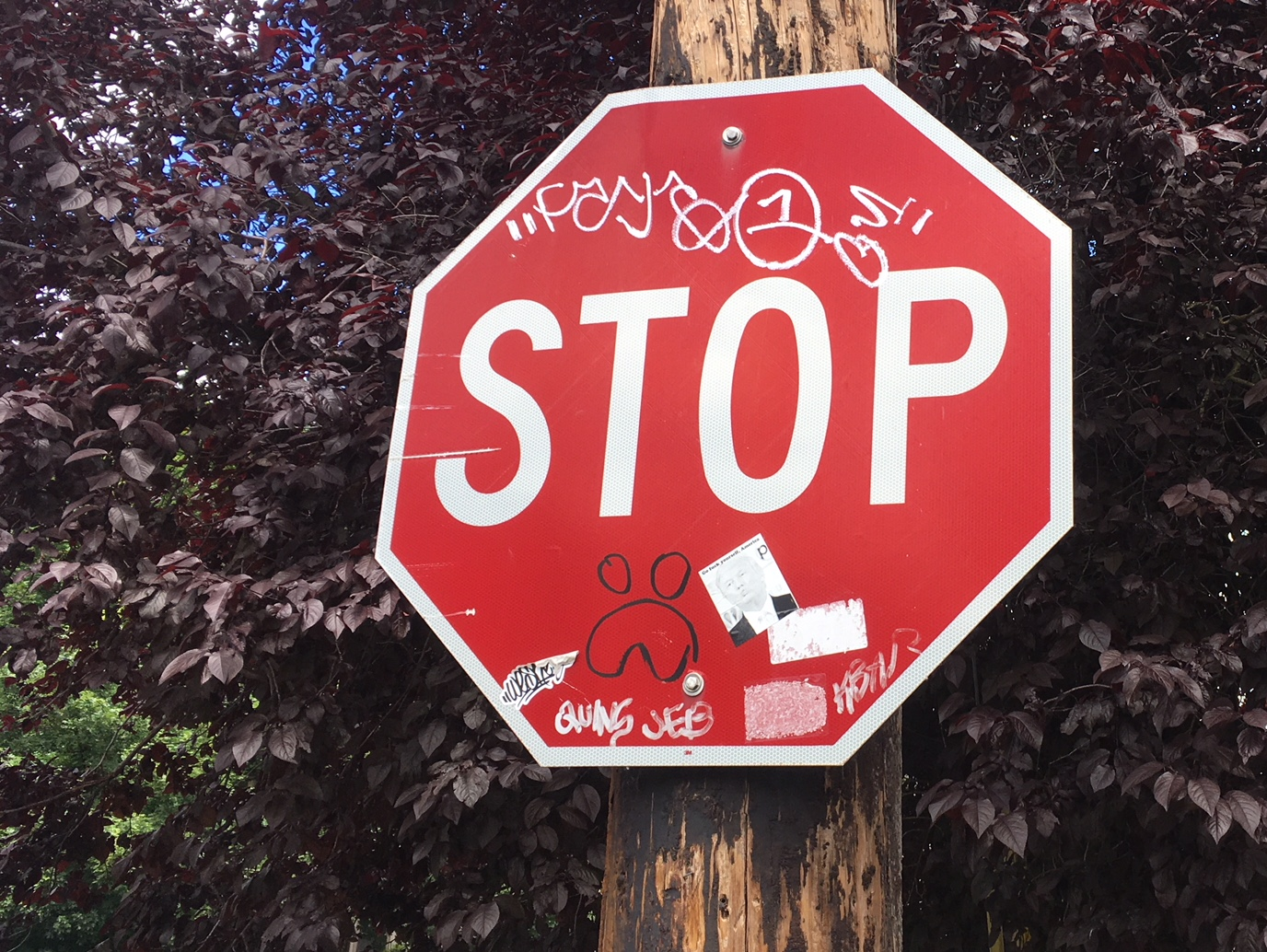 Don't) Stop! Blogging about Stop Signs – Portland Orbit