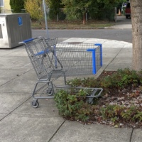 Spring Cleaning (The Stories I Could Never Get To): The Return of the Shopping Cart Blog